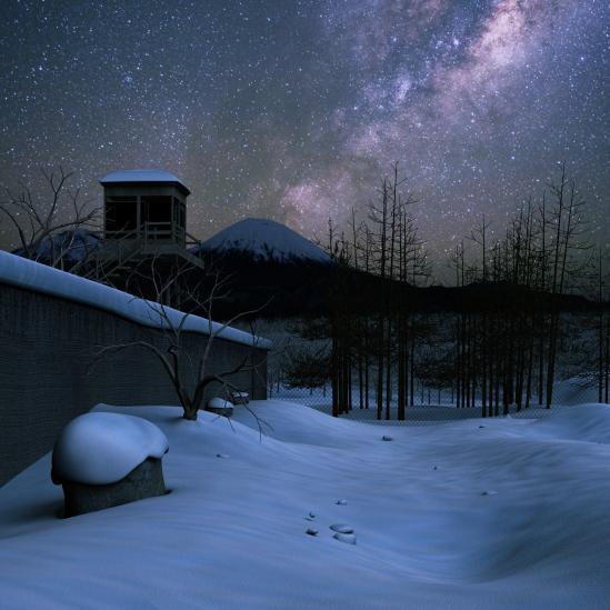 Starry Snow